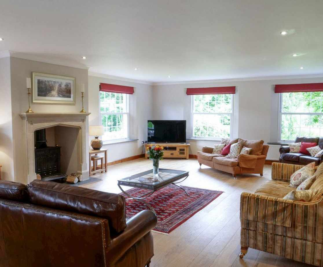 Elegant and spacious living room