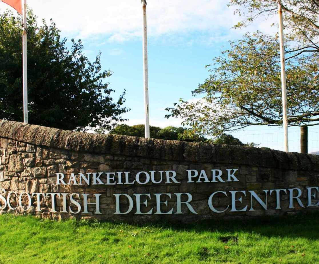 Scottish Deer Centre in Cupar is a treat for the family