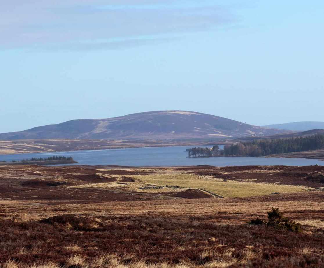 Looking across Dava Moor to Lochindorb