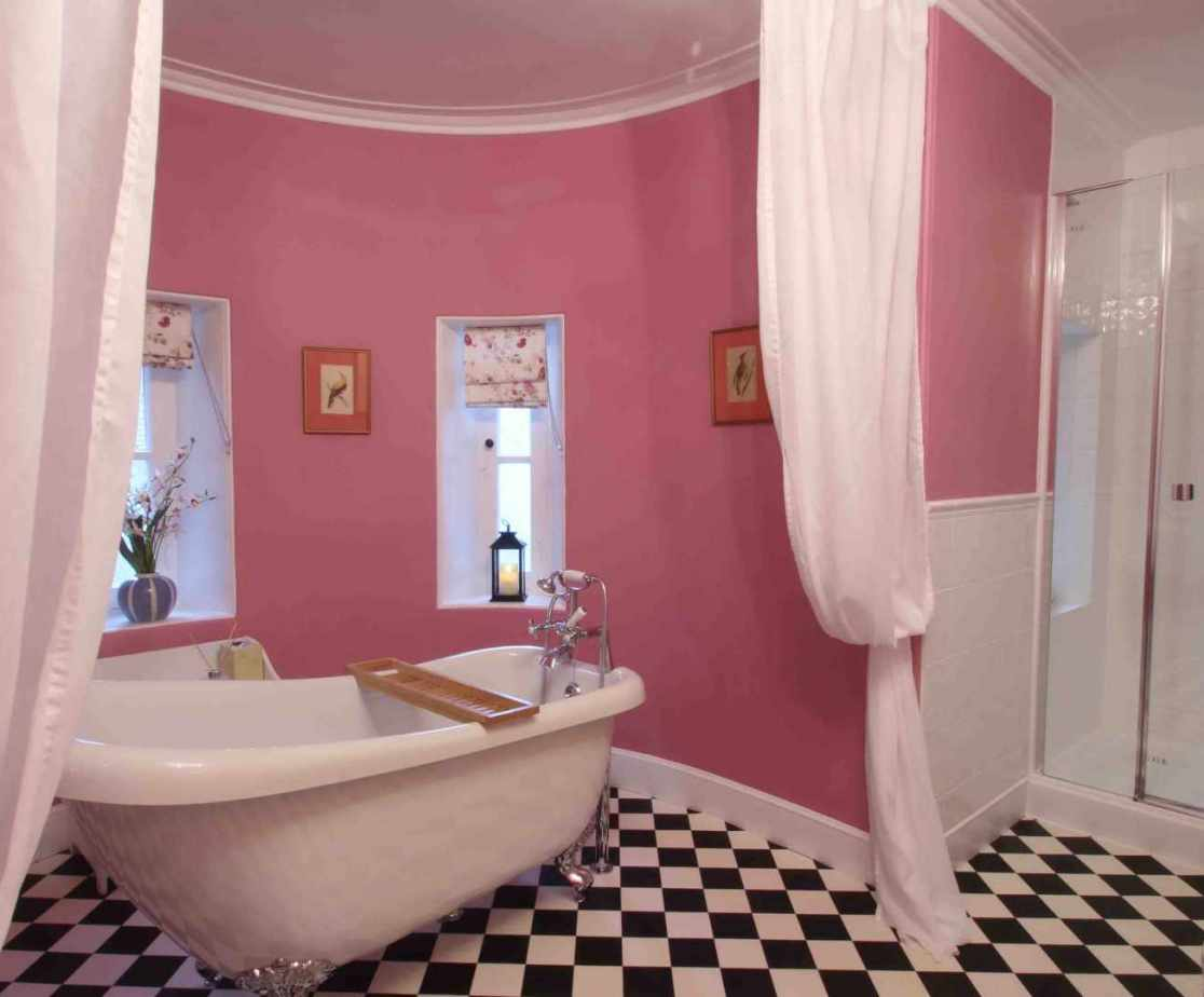 The fab pink bathroom with slipper bath and shower