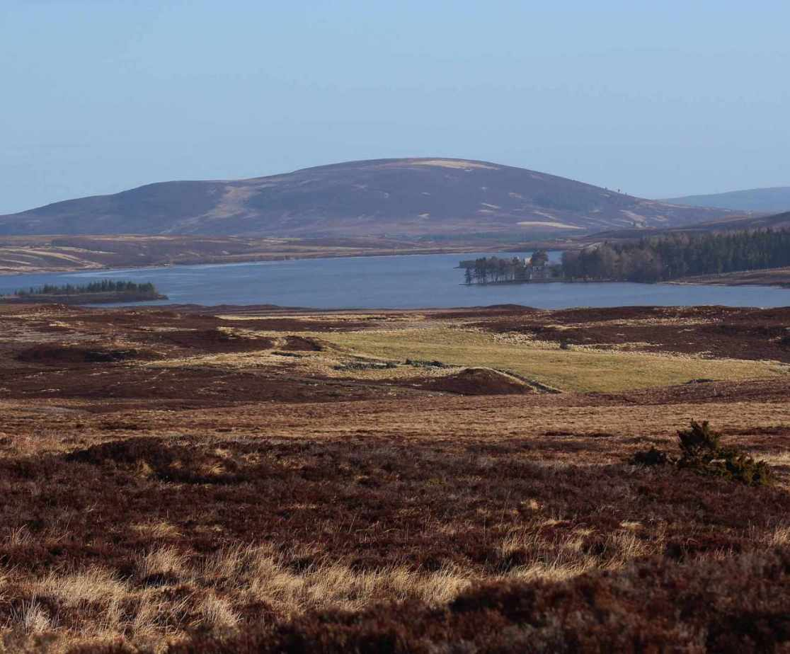 Take a drive across Dava moor