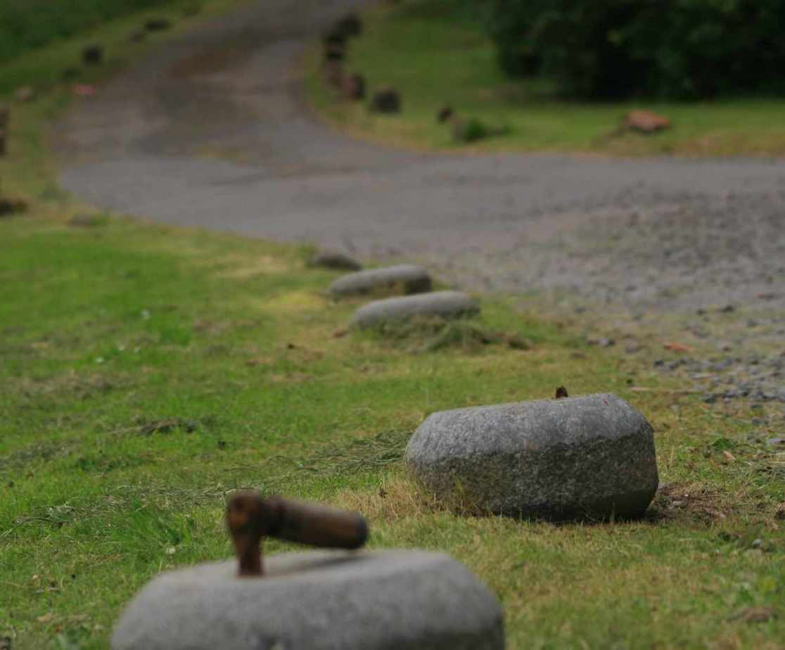 The \'stones\' on the driveway