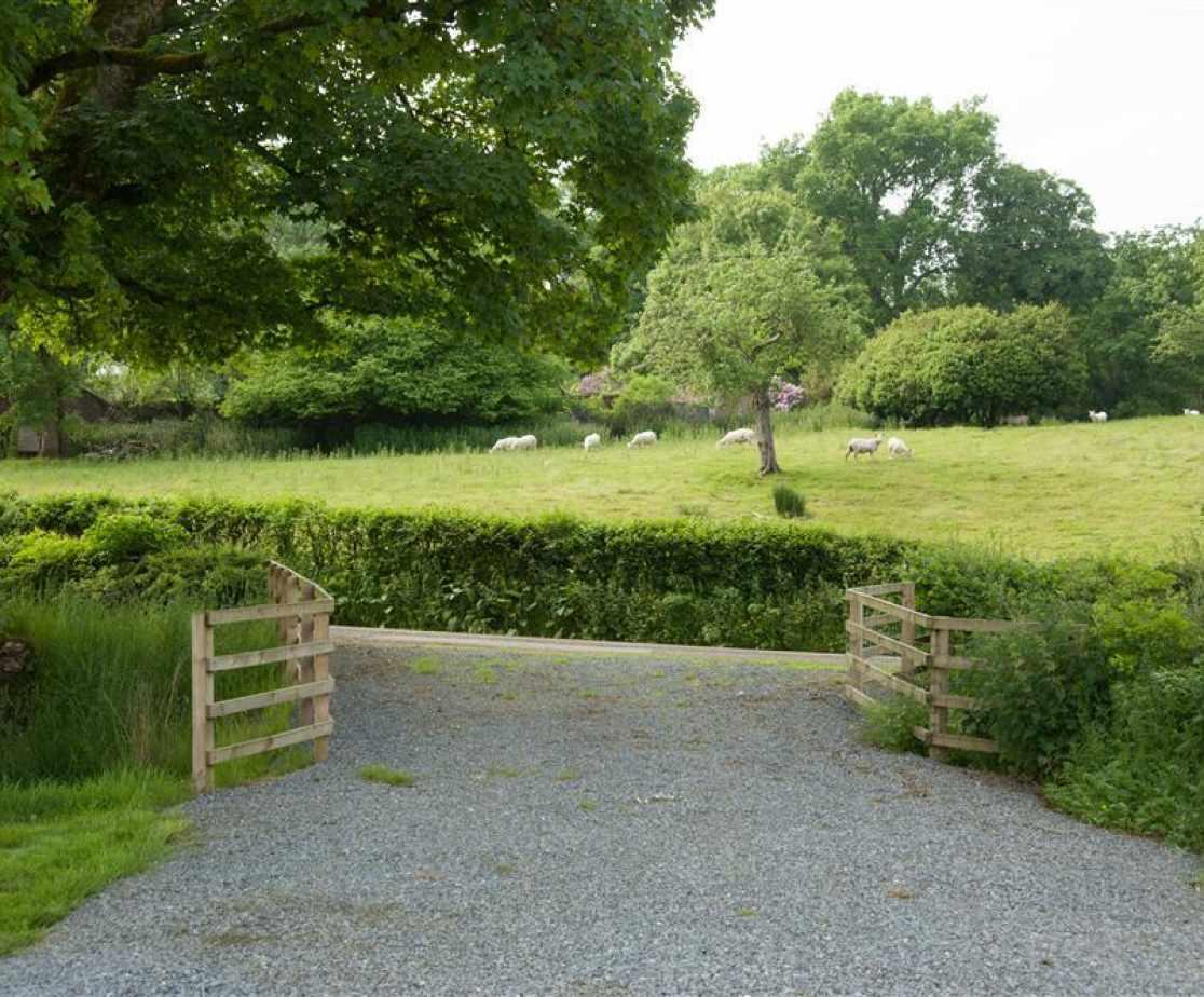 Cynghordy Garden Views-4537