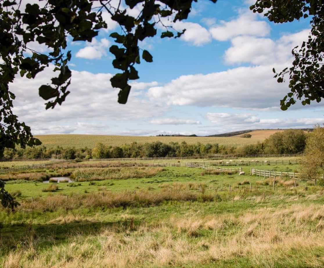 View across the paddocks