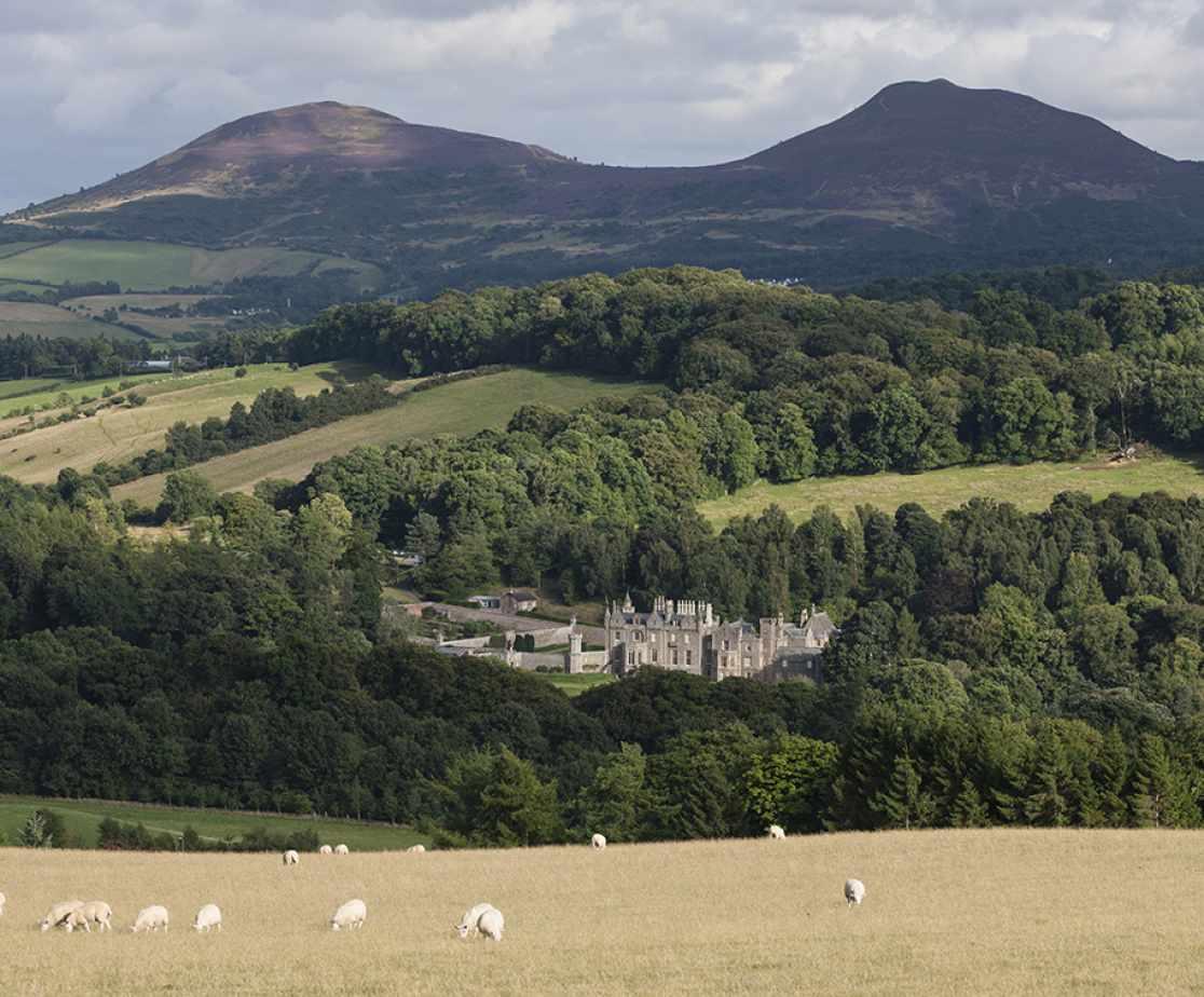 Surrounding Area | Luxury Melrose Castle