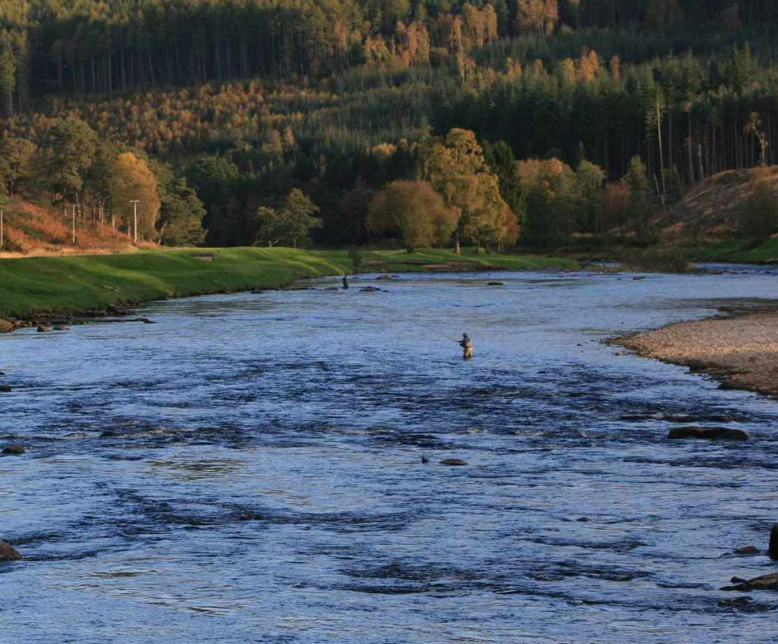 Salmon fishing is popular in this area