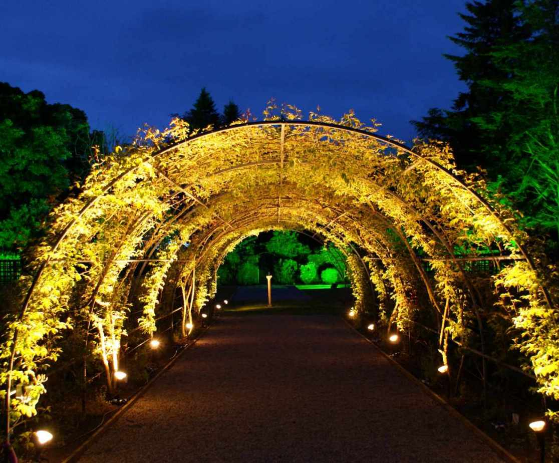 The gardens look even more impressive lit up at night on request
